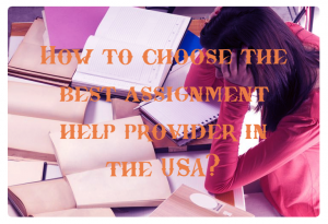 homework assignment help usa